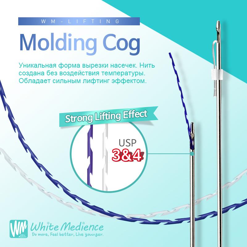 Molding Cog