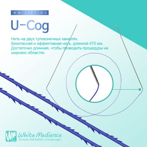 U-Cog